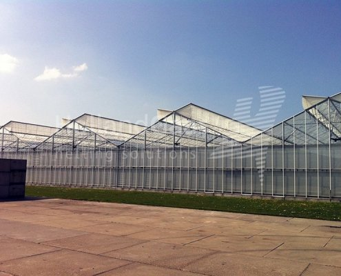 Holland Gaas netting system in a widespan greenhouse