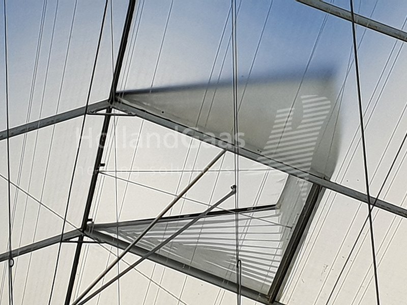 Holland Gaas netting system in a tempered glass greenhouse